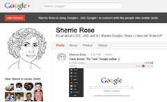 google-bar-new-sherrie-rose