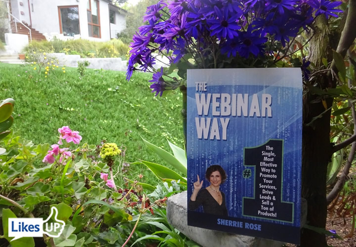 The Webinar Way Likes UP book flowers