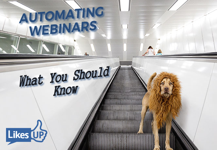 Before Automating Your Webinars - What You Should Know