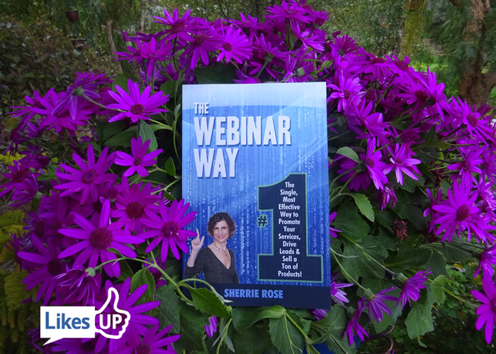 Free book The Webinar Way 5 day giveaway on Amazon kindle https://www.amazon.com/Webinar-Way-Effective-Services-Products-ebook/dp/B079ZL82PD